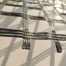 雙向玻璃纖維土工格柵 玻纖格柵價格 價格優惠圖片