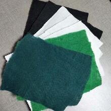 透水土工布 蓋土土工布 不受氣溫影響圖片
