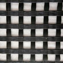 山東玻纖土工格柵 玻纖格柵自粘式 常年供應圖片