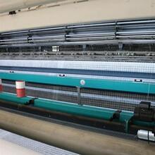 玻纖土工格柵 三經三緯格柵 生產定制圖片