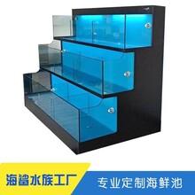 株洲定制海鮮池廠家 兩層缸制作