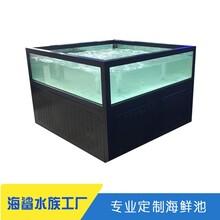 石門3米海鮮池定制價格 咨詢廠家電話