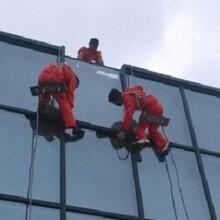 杭州幕墻中空玻璃維修玻璃幕墻更換維修報價 售后保障圖片