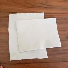 滤水土优游平台1.0娱乐注册布 土优游平台1.0娱乐注册织物 提供样品图片