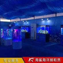 郴州海洋生物展覽價格 房地產樓盤活動
