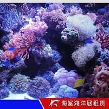 永州海洋生物展覽價格 房地產樓盤活動