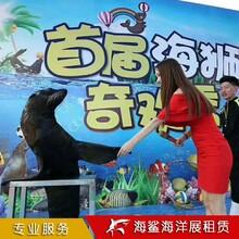 邵陽海洋生物展覽價格 房地產樓盤活動