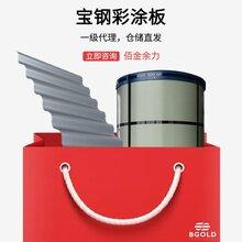 安徽滁州市寶鋼彩鋼瓦 100um涂層膜厚