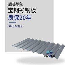 山東泰安市寶鋼高鋁鋅鋁鎂彩涂板 高氮環境