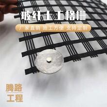 瀝青玻纖土工格柵 玻纖格柵價格 質量保障圖片