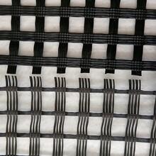 雙向玻璃纖維土工格柵 玻纖格柵自粘式 規格全圖片