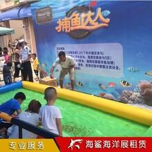 邵陽鯊魚展專場價格 海洋魚缸展覽出租