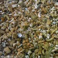 厂家批发蛭石 栽培基质养花植料 宠物垫材 园艺铺面蛭石