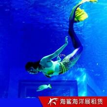 岳陽海洋魚缸展費用 商場樓盤活動適用