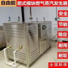 自由能蒸汽熱源機燃氣 常壓超低氮冷凝蒸汽鍋爐