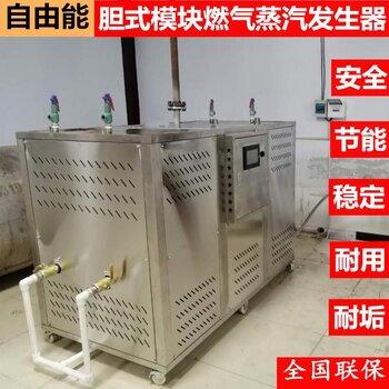 自由能蒸汽熱源機燃氣 常壓氮冷凝蒸汽鍋爐