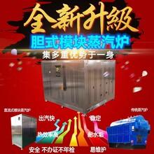 燃氣蒸汽發生器 燃氣模塊蒸汽爐 供應蒸汽源鍋爐