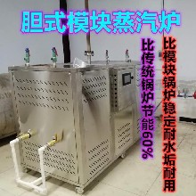 小型低壓模塊式低氮蒸汽鍋爐 天然氣蒸汽鍋爐0.5噸服裝洗衣廠