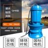 天津泵站使用潜水轴流泵 黄河流域使用