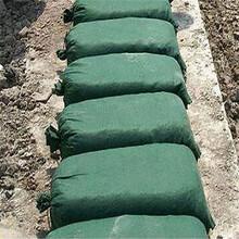平頂山邊坡防護生態袋規格齊全圖片