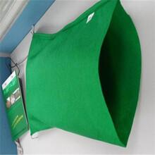 開封綠色生態袋款式齊全圖片