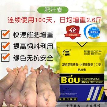 杭州熱門增肥 體重增加