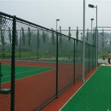 静电喷涂篮球场围网、足球场围网生产厂家图片