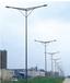泰安新泰市led路灯价格当地厂商经销代理,9米10米LED路灯多少钱