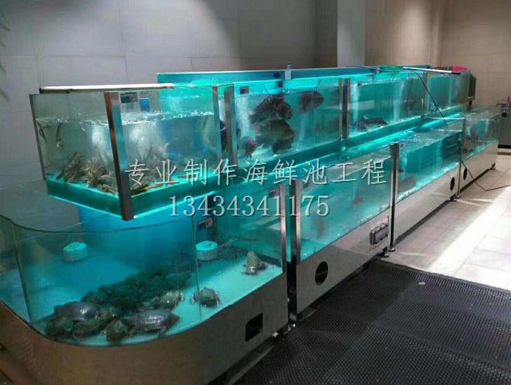 增城金星村定做海鮮魚池案例