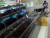 廣州定做超市魚池 海鮮市場玻璃魚池 點擊查看詳情