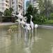 汕頭玻璃鋼動物雕塑量大從優,仿真動物雕塑