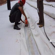 全新塑料焊接機服務至上,爬焊機圖片