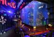 荔灣生態魚缸圖片 歡迎來電洽談