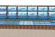 白云神山海鮮池訂做包邊 餐廳玻璃海鮮池定做