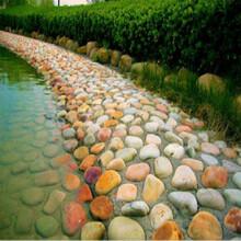 明石石業花崗巖,武漢定制鵝卵石品質優良圖片