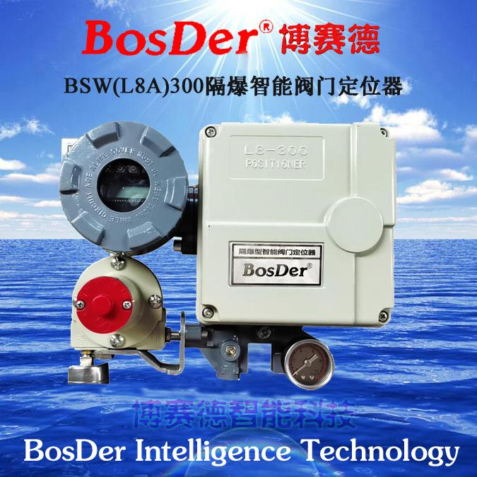 BosDer博赛德(博学虚怀,争赛前行,诚信仁德)BSW60,物位检测设备