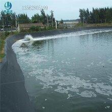 水产养殖防渗膜 pe防渗膜图片