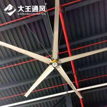 清遠大型節能工業風扇電機溫升低于25℃圖片