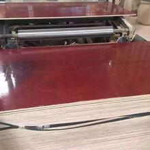 覆膜板廠家紅模板圖片