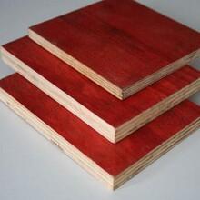 黑色覆膜板尺寸红模板图片