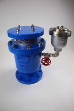 廠家供應FGP4X型高壓復合式排氣閥圖片