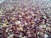 銀川西夏區彩色陶瓷顆粒防滑路面膠粘石地坪工程施工隊廠家