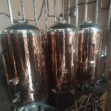 二手實驗室發酵罐處理,二手乳品發酵罐圖片