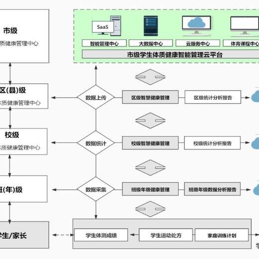 南京学校智慧体育软件批发价大学体质健康管理系统