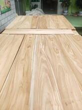 大剛木材老榆木檁條,濱州老榆木原木批發圖片