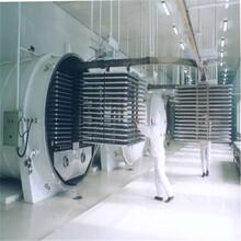 冻干机二手制药冻干机,二手冻干机进口电话图片