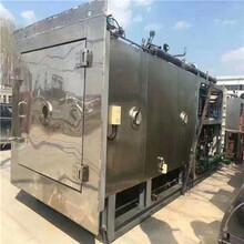 二手東富龍凍干機制藥設備,二手真空凍干機圖片
