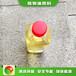 天津環保節能新源素植物油價格實惠