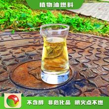 南京玄武區植物油燃料賣廚房新型燃料料綜合概括,生物燃料植物油燃料圖片