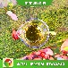 天津河東獨家銷售植物油節能生物燃油料綜合概括,生物燃料廚房用油